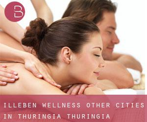 Illeben Wellness (Other Cities in Thuringia, Thuringia)